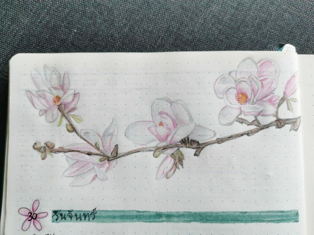 Irene Chan bullet journal