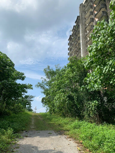 The beaten path leading to Highland Towers